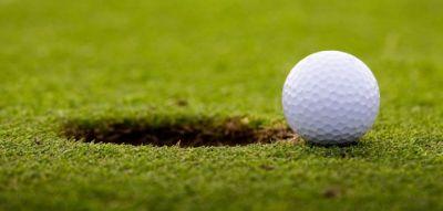imagen pelote de golf